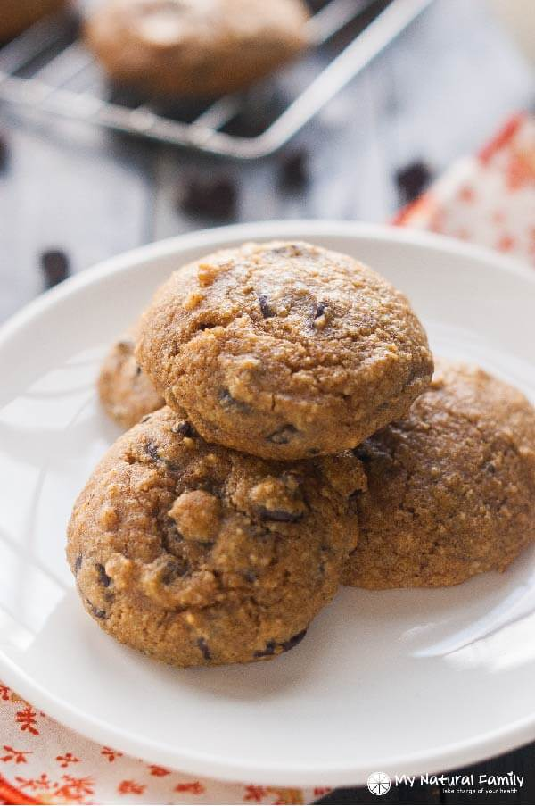 Paleo Pumpkin Chocolate Chip Cookies Recipe (Gluten-Free, Clean Eating, Dairy-Free)