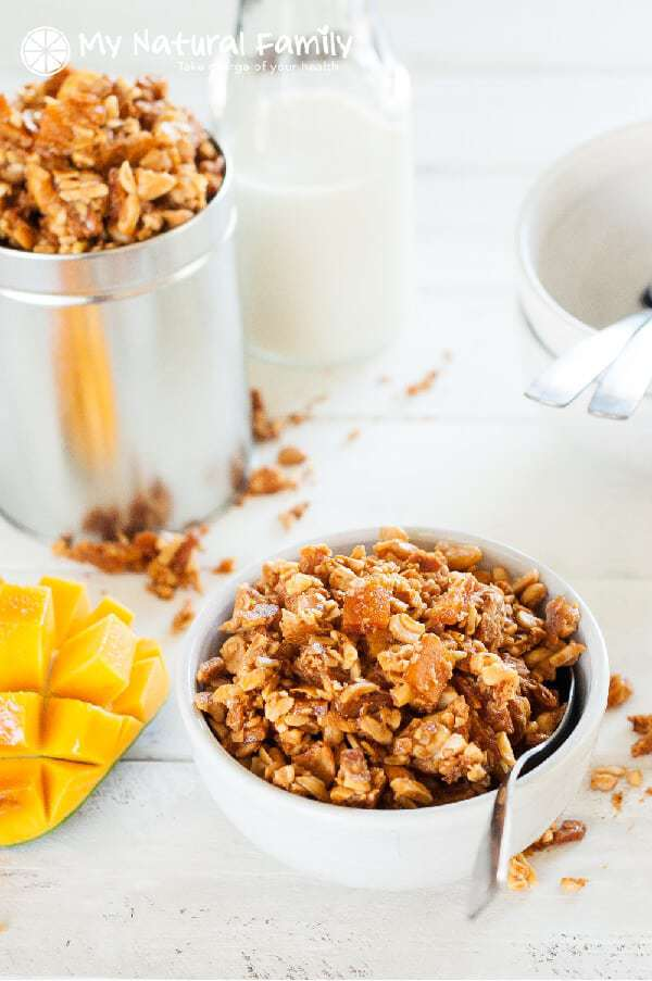 Honey Roasted Tropical Granola Recipe {Paleo, Clean Eating, Gluten Free, Dairy Free}