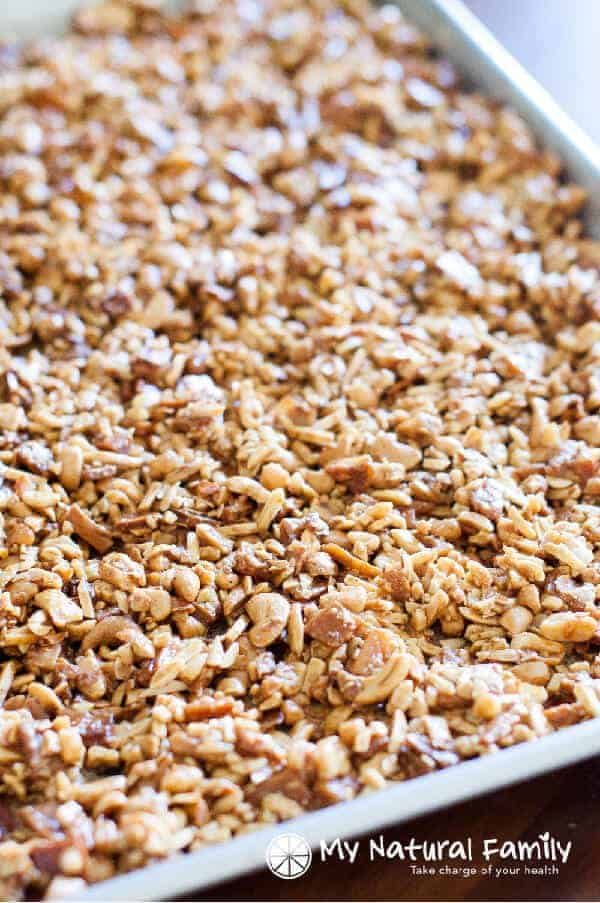 Honey Roasted Tropical Paleo Granola Recipe {Paleo, Clean Eating, Gluten Free, Dairy Free}