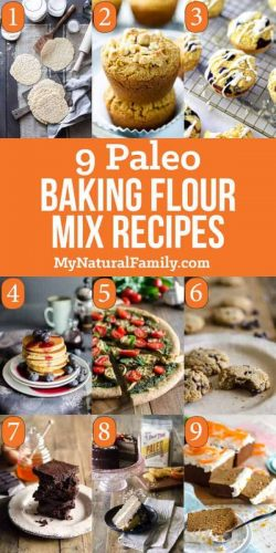 Paleo Baking Flour Mix Recipes
