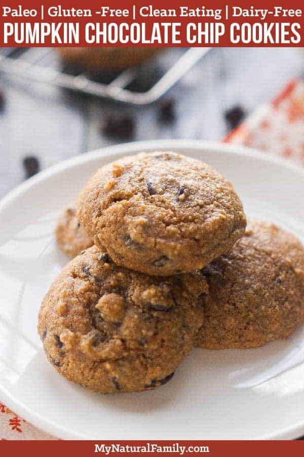 These Paleo pumpkin chocolate chip cookies are not too sweet, full of pumpkin spice flavor and have that cake-y texture that you would expect from a pumpkin cookie. #mynaturalfamily #paleo #paleorecipes #healthyeating #healthyrecipes #healthyfood
