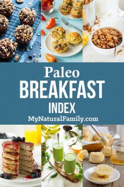 Paleo Breakfast Recipes